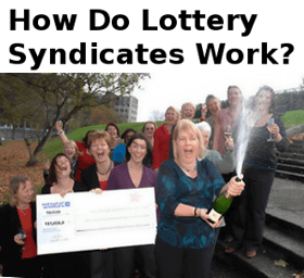 how do lottery syndicates work?